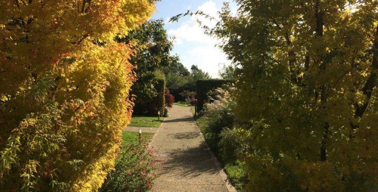 Photo de l'allée vers le Parc Mémorial du Crématorium de Vannes